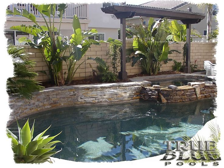 Swimming Pool Designs Designing Swimming Pools How To Design A Swimming Pool Tropical Swimming P Pools For Small Yards Small Backyard Pools Pool Landscaping