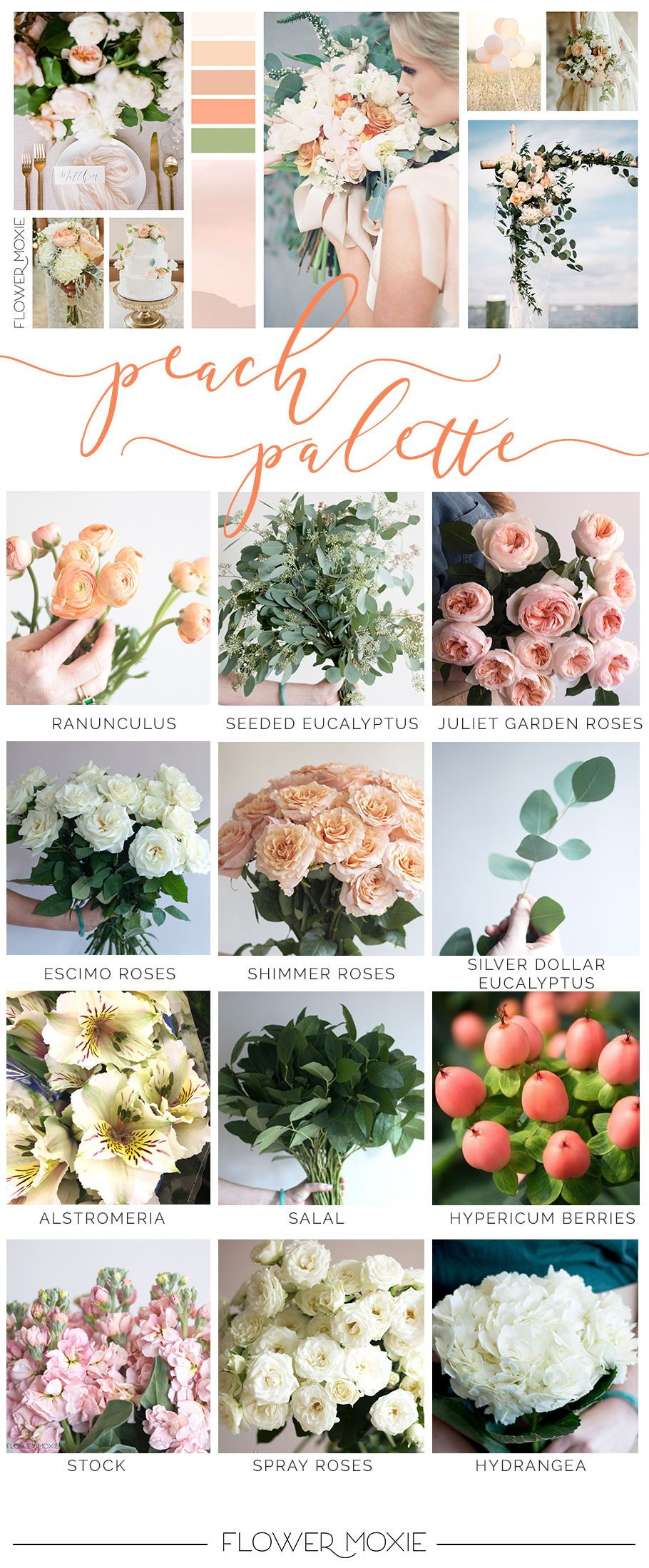 Peaches And Cream Color Palette Premade Packages To Make Your Diy Flower Designs A Cinch Peach Wedding Flowers Wedding Flower Types Bulk Wedding Flowers