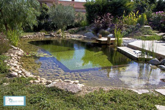 ponton 3 piscine naturelle schwimmteich pinterest schwimmteich teiche und schwimmbecken. Black Bedroom Furniture Sets. Home Design Ideas