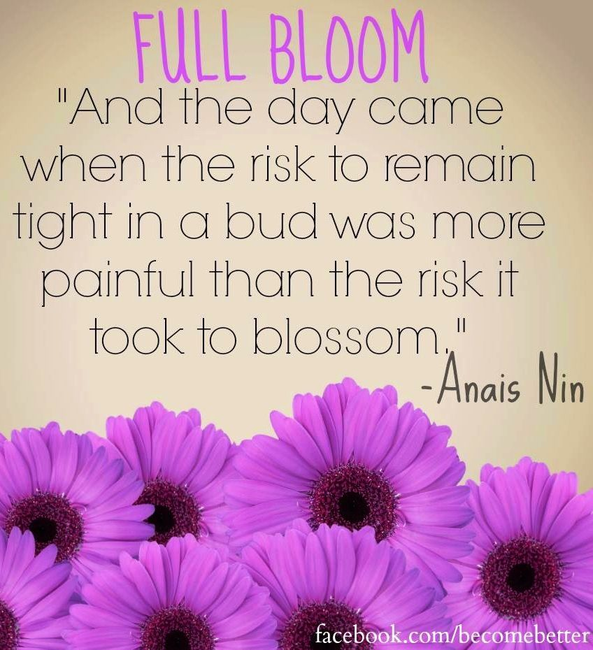 Quotes About Love Blooming : Quotes About Blooming. QuotesGram