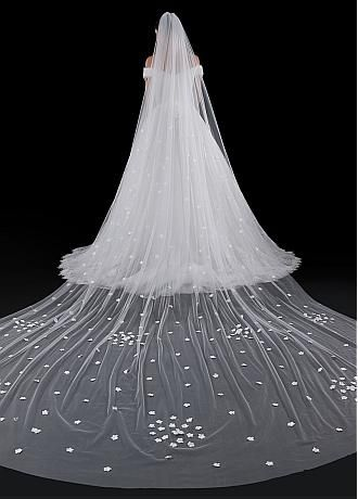 Buy Lace And Long Cheap Wedding Veils For Sale Adasbridal Com Wedding Veils Tulle Wedding Veil Wedding Veil