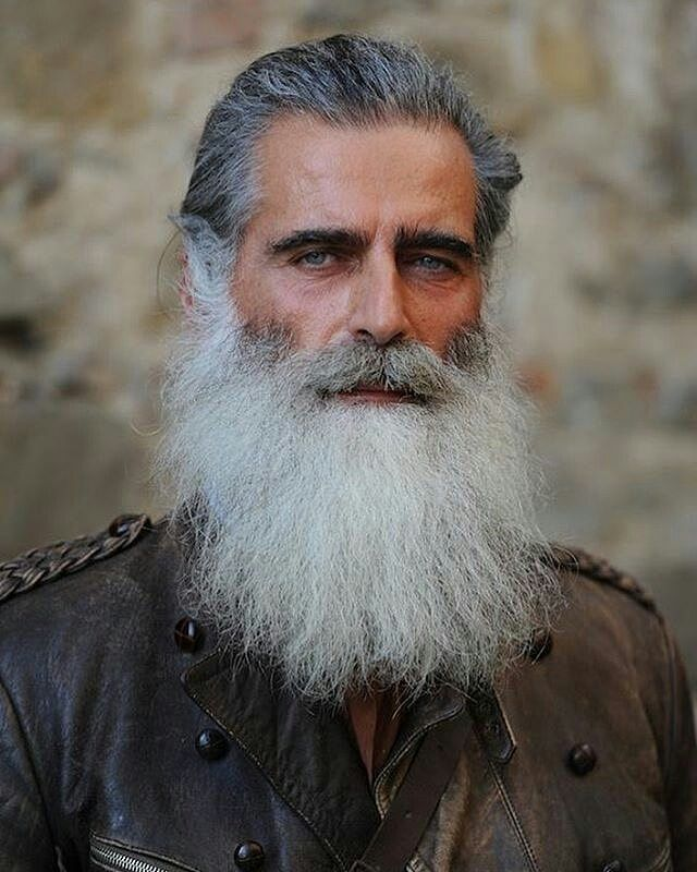 daily dose of awesome beard style ideas from beardoholiccom