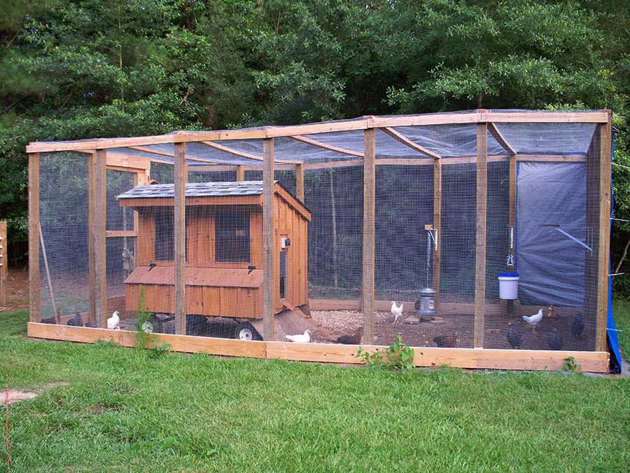Horizon Structures 5x6 Chicken Coop With Automatic Dawn 2 Dusk Chicken Door And Chicken Tractor The Amazing Chicke Chicken Coop Chickens Backyard Chicken Barn