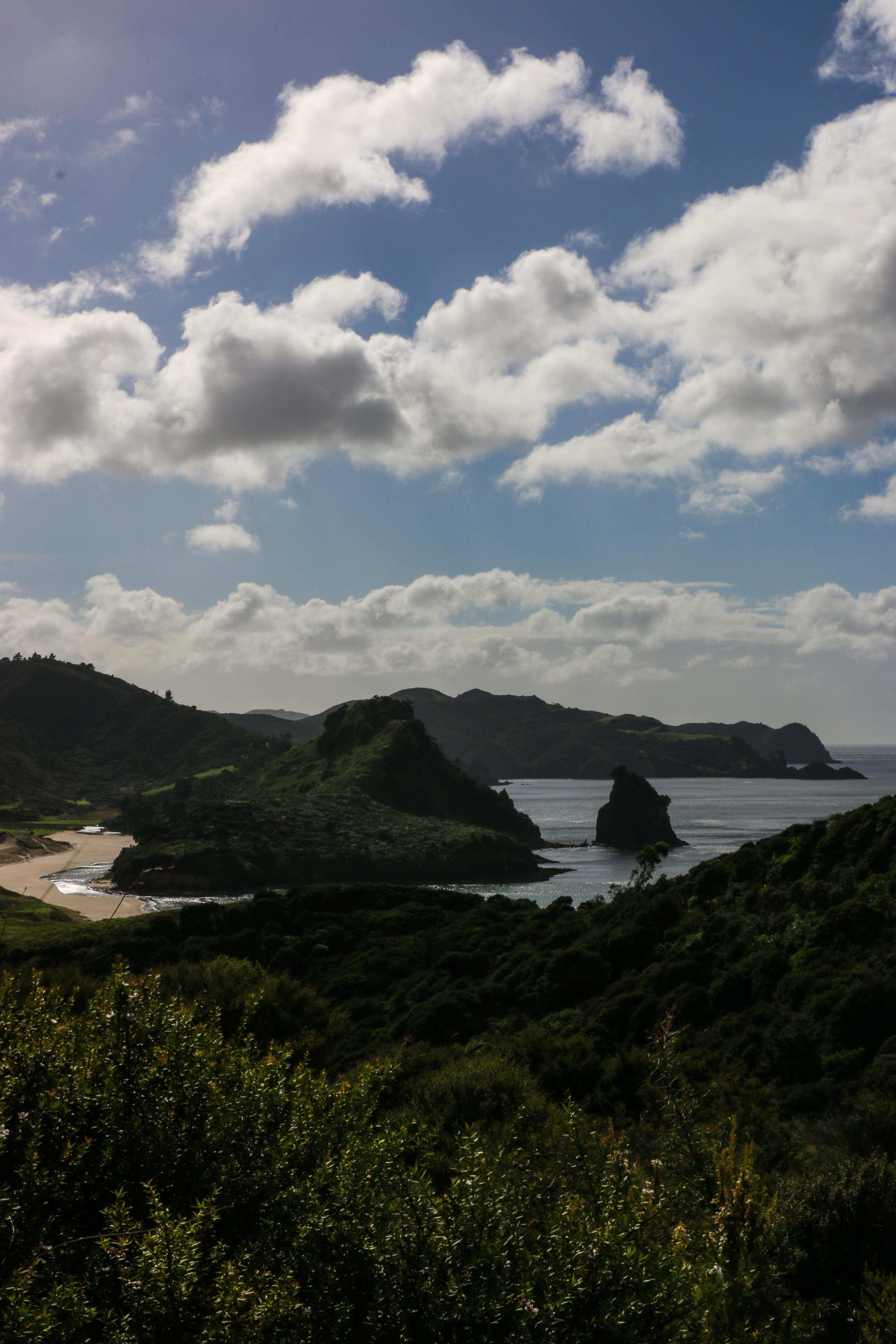 Awana bay on new zealandus great barrier island oc x