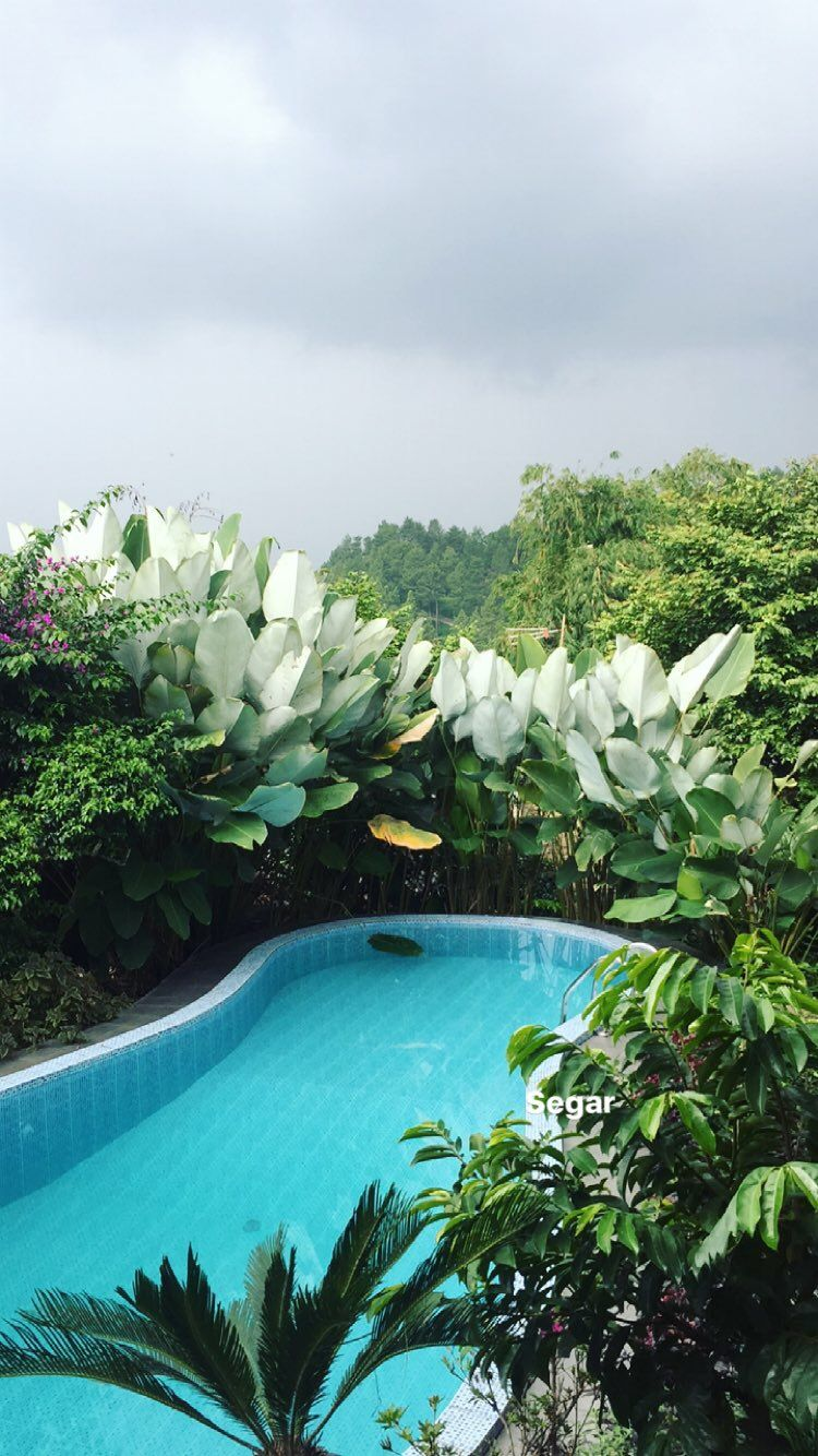 Villa Bumina Ayi Puncak Bogor Perjalanan Indonesia Gambar