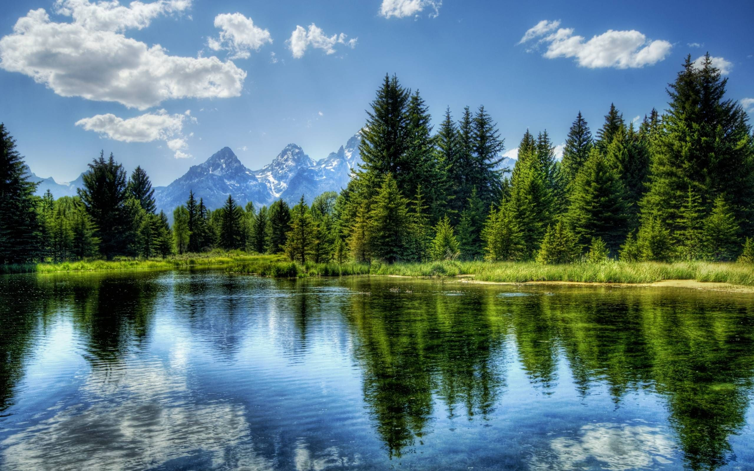 10 High Quality Nature Wallpaper With Images Landscape Wallpaper Beautiful Landscapes Forest Lake