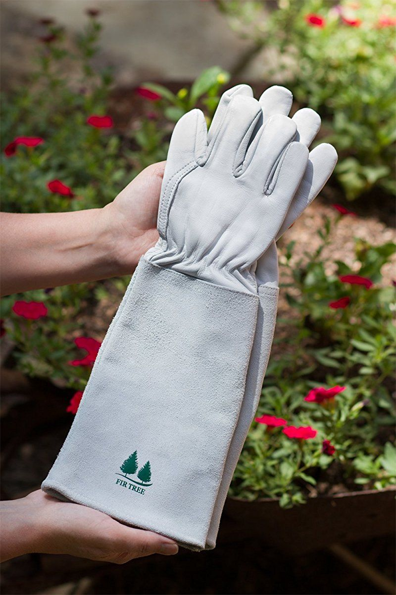 Leather Gardening Gloves By Fir Tree Premium Goatskin Gloves With