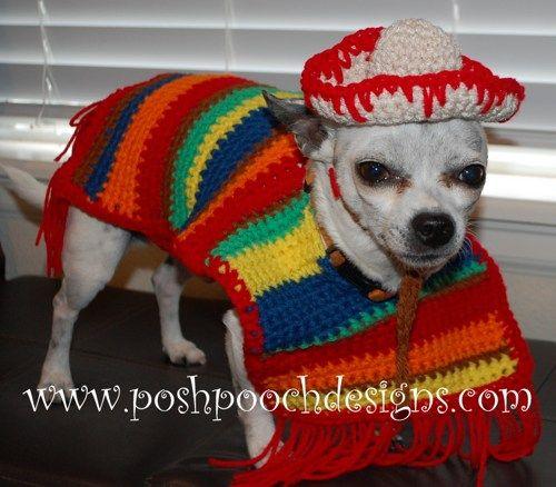 Dog Poncho and Sombrero - Cinco De Mayo Dog Costume   PoshPoochDesigns - Pets on ArtFire