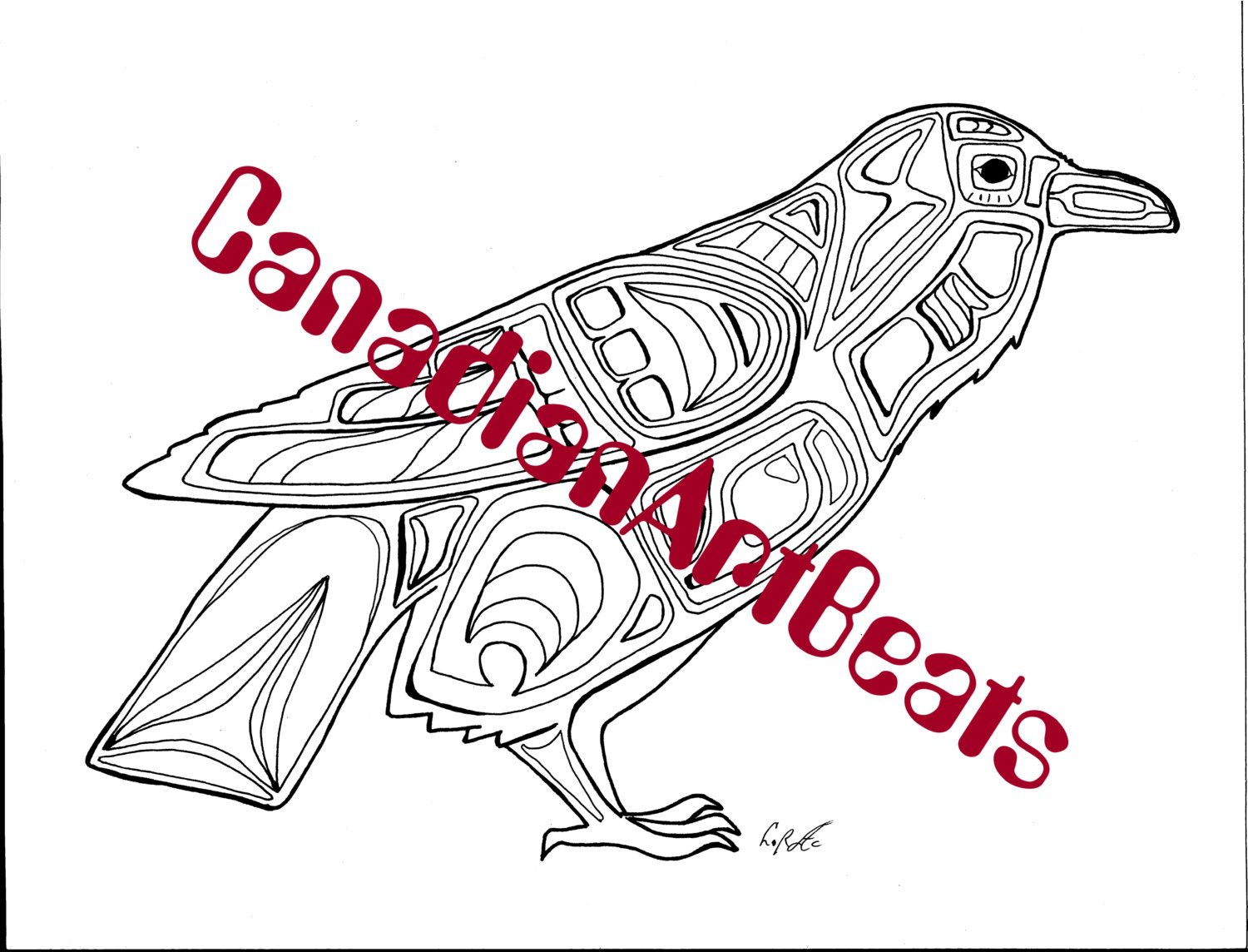 raven bird coloring page downloadable printable art by canadianartbeats on etsy