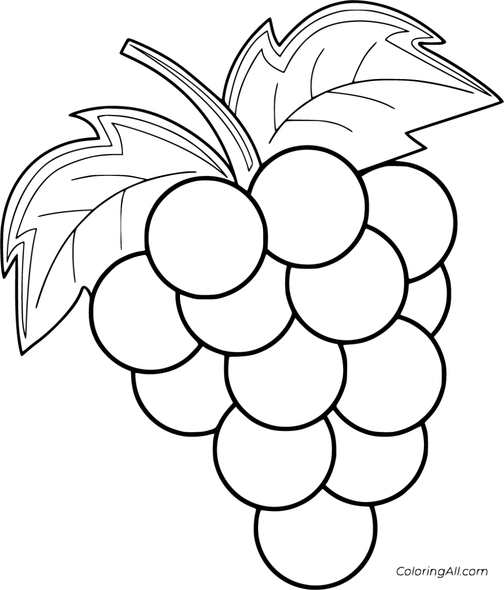 19 Free Printable Grapes Coloring Pages In Vector Format Easy To Print From Any Device And Automatic Fruit Coloring Pages Grape Drawing Cartoon Coloring Pages