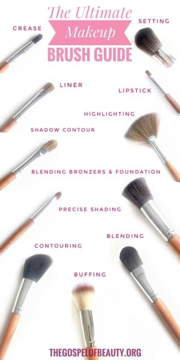 Eyeshadow Guide: The Ultimate Makeup Brush Guide: Which Makeup Brush To Use