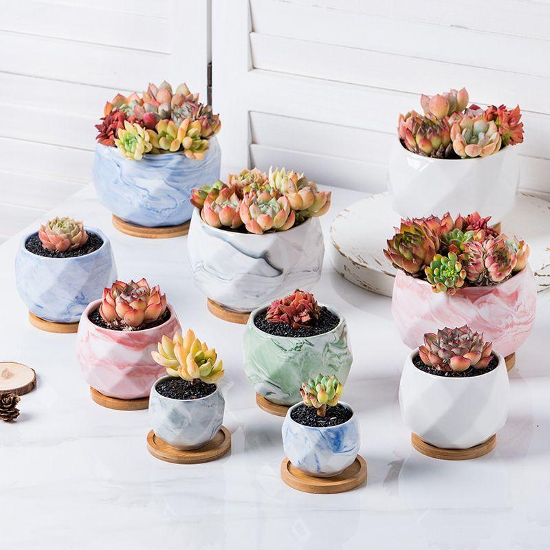 Cheapest succulent ceramic flower pot plant pots wholesale