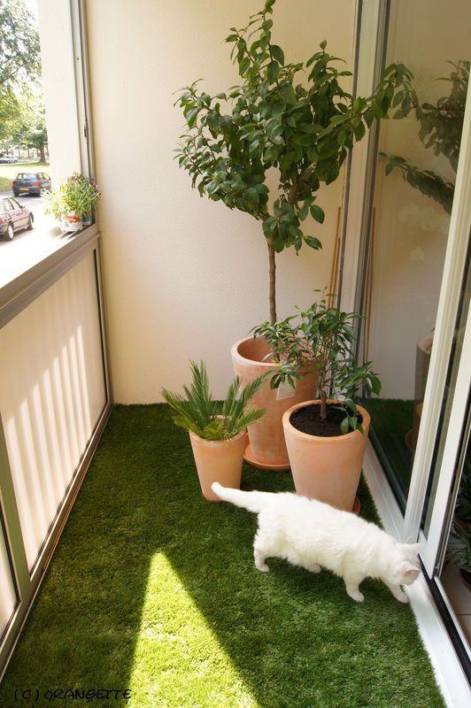 presque un jardin fleurs d 39 orangette d co cie pinterest fermer balcons et am nagement. Black Bedroom Furniture Sets. Home Design Ideas