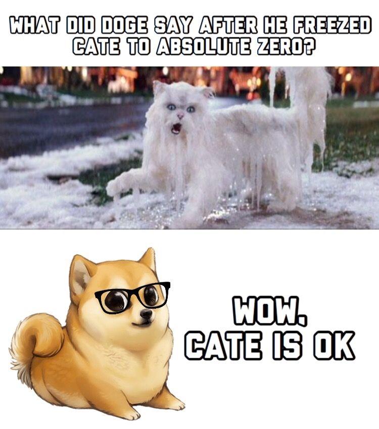 Master Thesis Advisor Supervisor Meme Doge Original