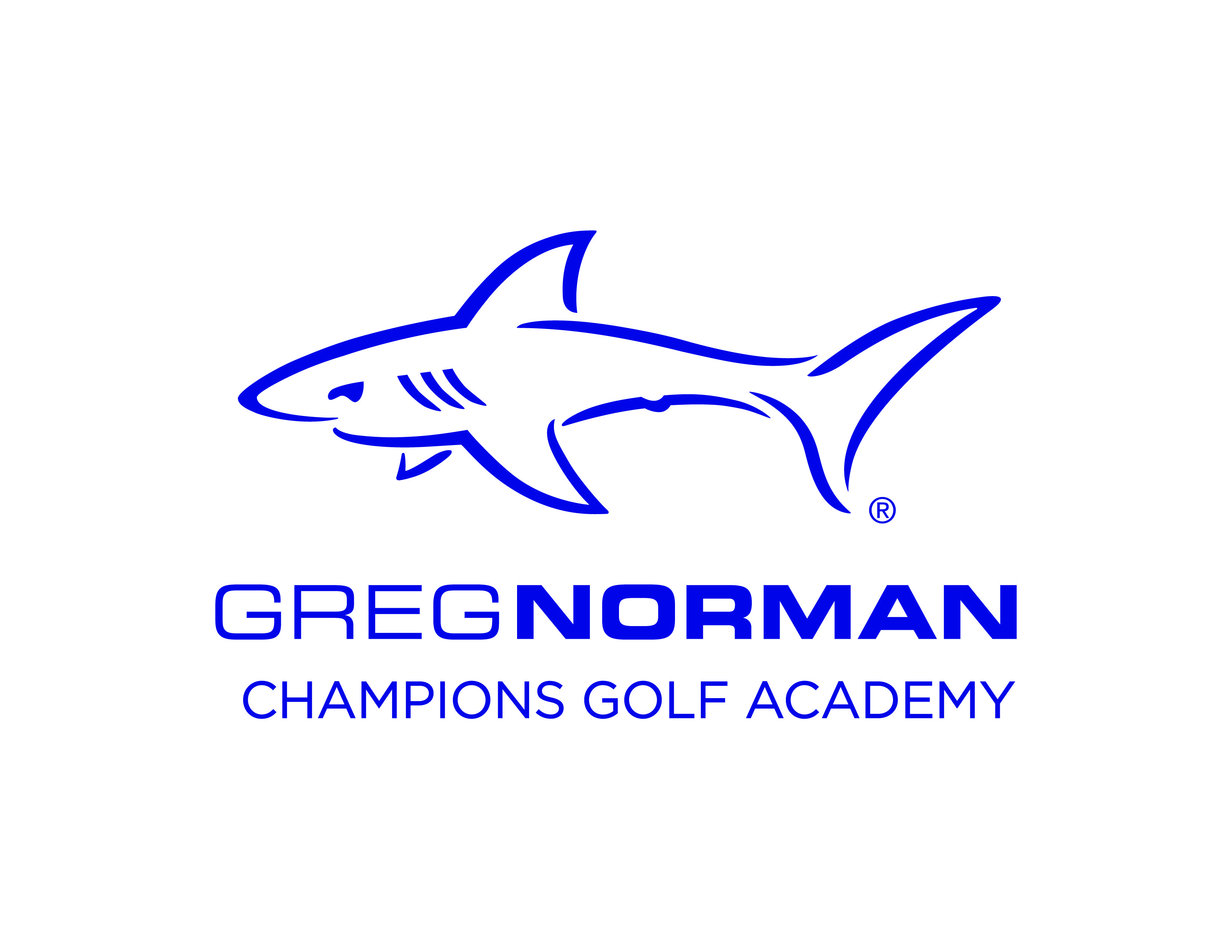 New Year New Logo Golf Academy Golf Training Academy