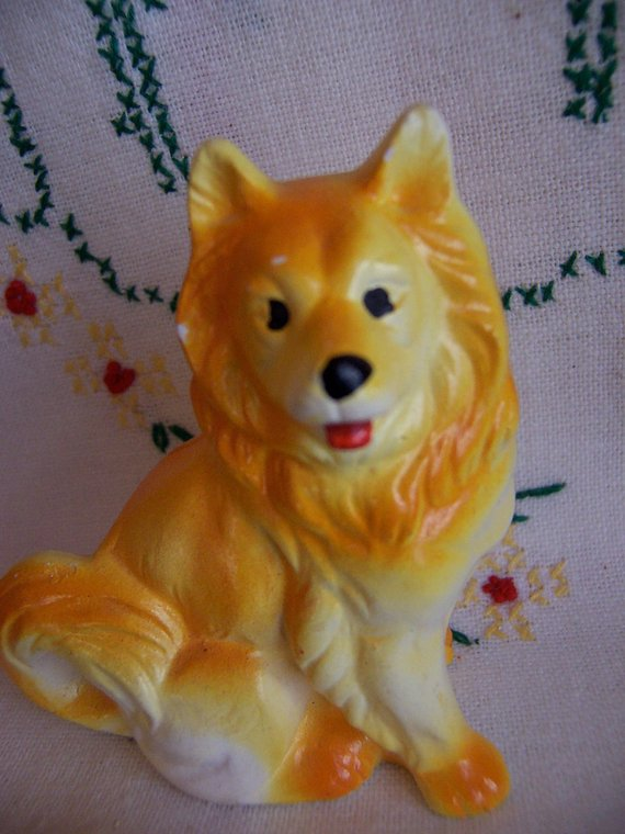 Little Yellow Collie Dog Shaker Collie Dog Dogs Collie