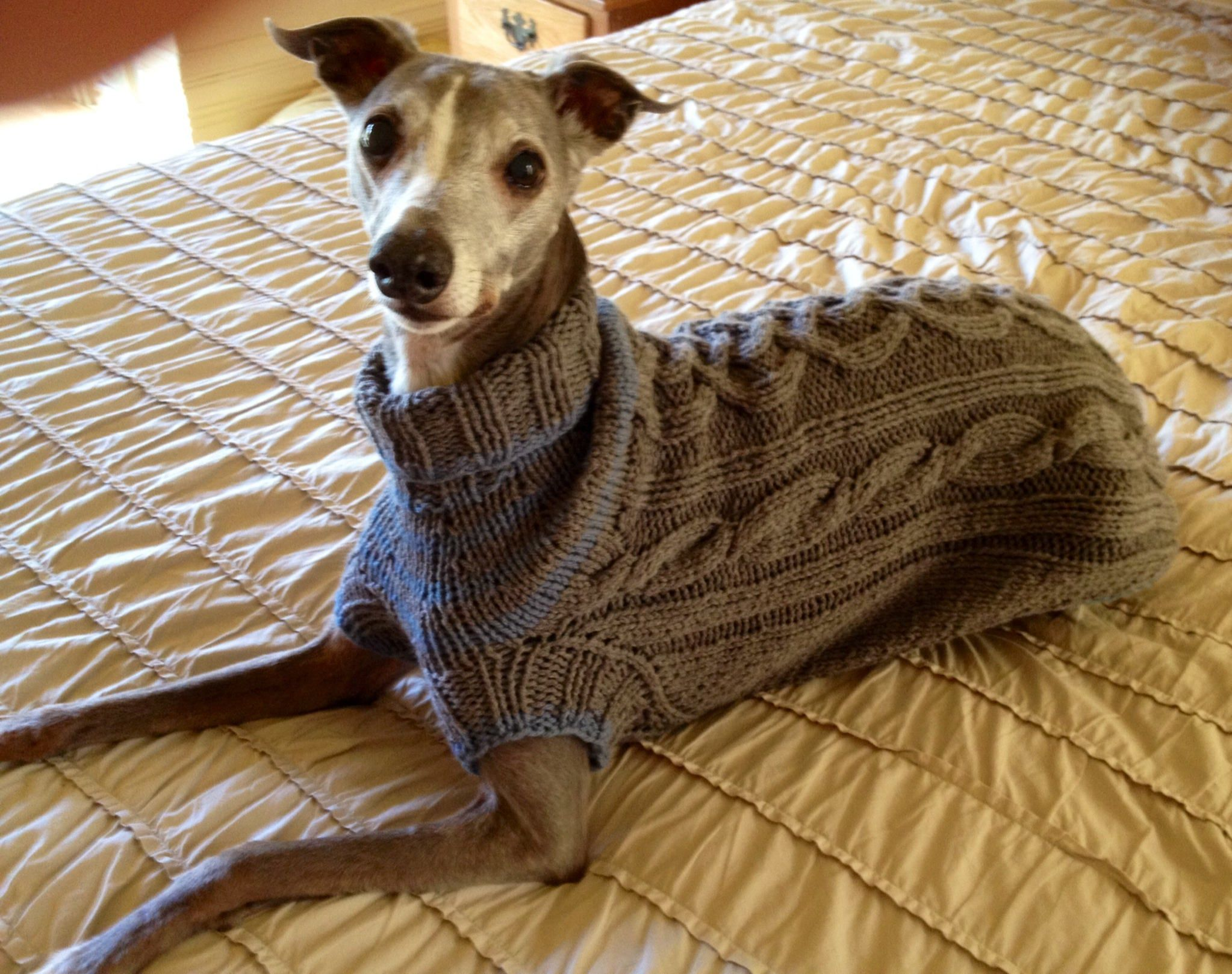 Whippet Sweater Pattern Pdf File Only