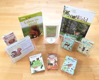 Materialwiese: Tiere des Waldes im Sachunterricht der Grundschule