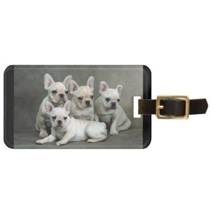 #Cute French Bulldog Puppies Bag Tag - #bulldog #puppy #bulldogs #dog #dogs #pet #pets