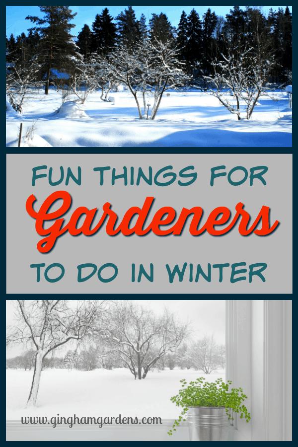 3f6ac026ea6c7a9104d4bef57e75cd2f - What Can Gardeners Do In Winter