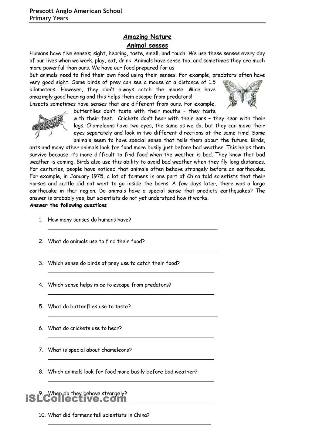 Animal senses   Reading comprehension worksheets [ 1440 x 1018 Pixel ]