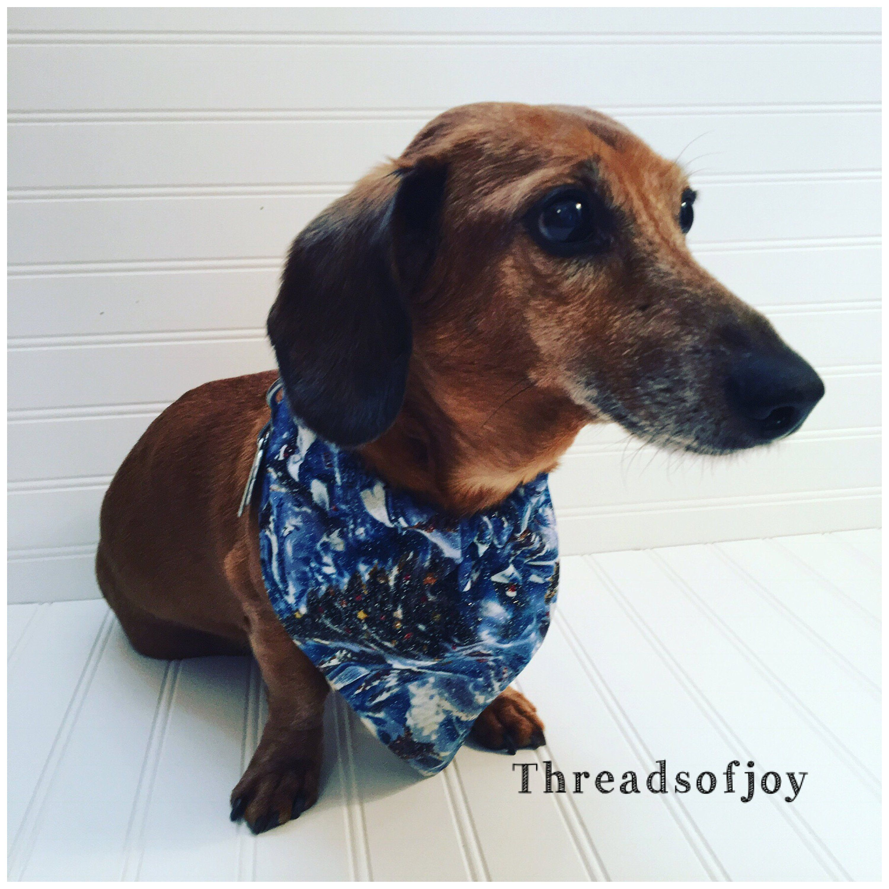 Miniature Dachshund Scarf Dachshund Neckware Pet Supplies Pet