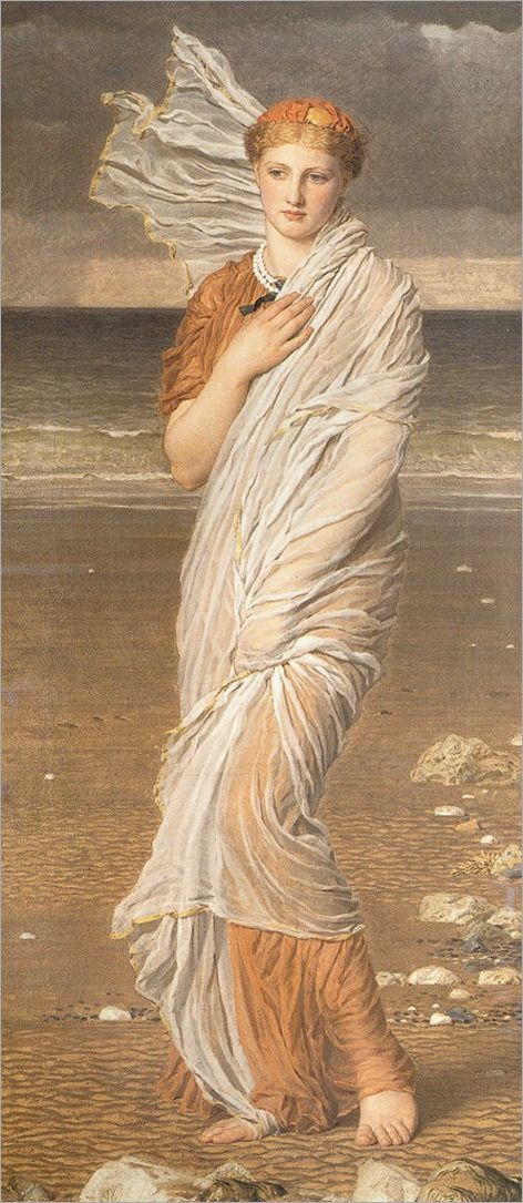 seashells, albert moore