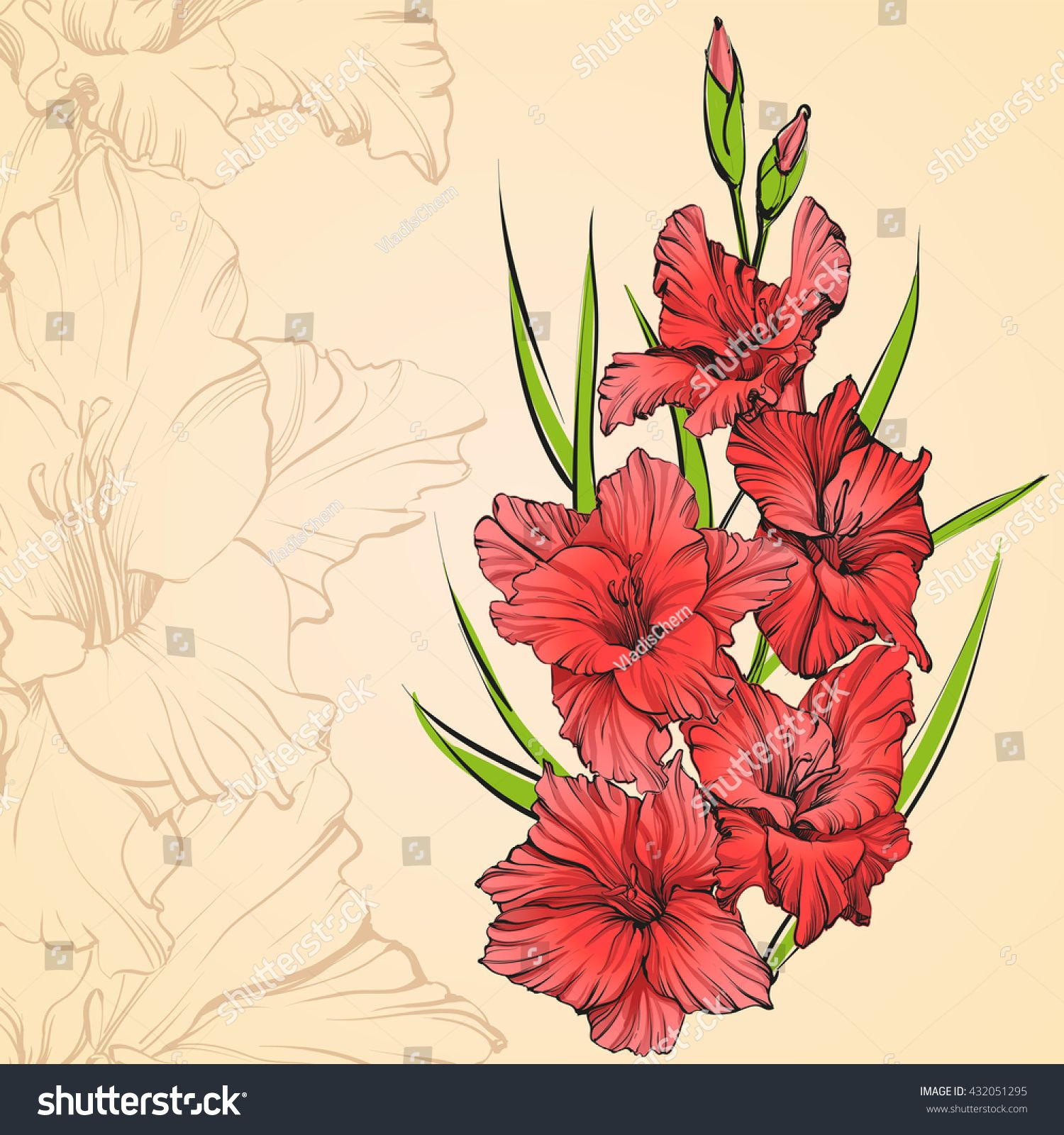 Floral Blooming Gladiolus Hand Drawn Vector Illustration Sketch Group Of Flowers Floral Background With Gla Gladiolus Gladiolus Tattoo Gladiolus Arrangements