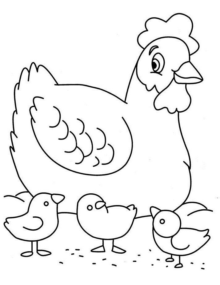 chicken keeping small children - Drawing For Small Kids