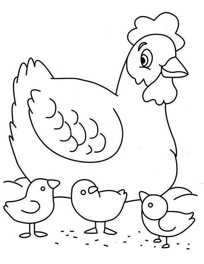 chicken keeping small children