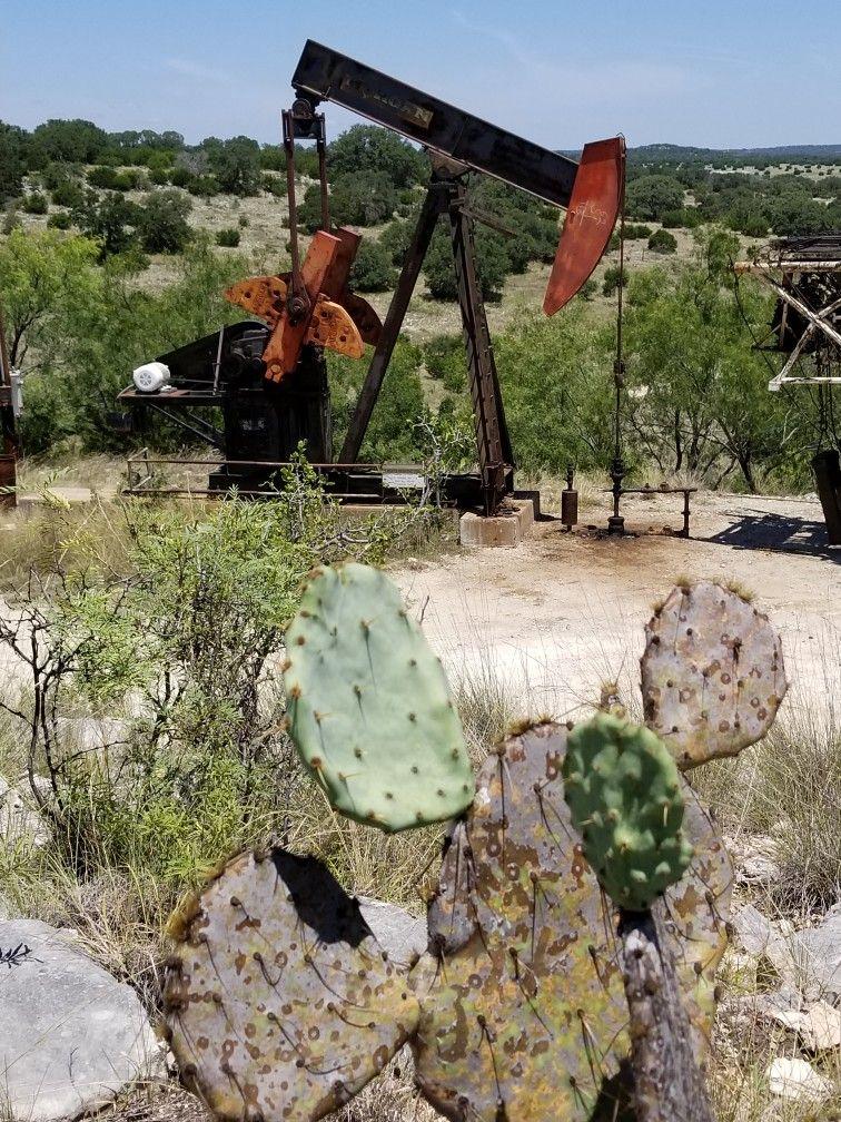 Southwest TX Outdoor decor, Patio umbrella, Patio