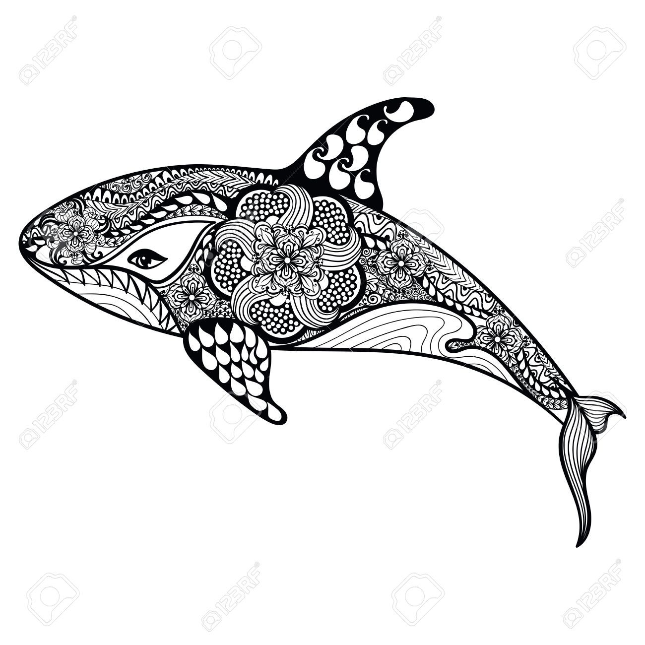 Stock Vector Whale Coloring Pages Animal Doodles Zentangle