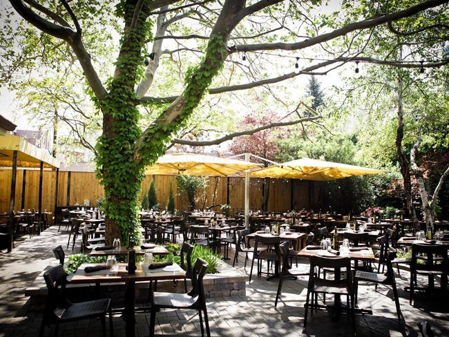 Pin By Sheila On Garden Trees Pinterest Chicago Restaurants