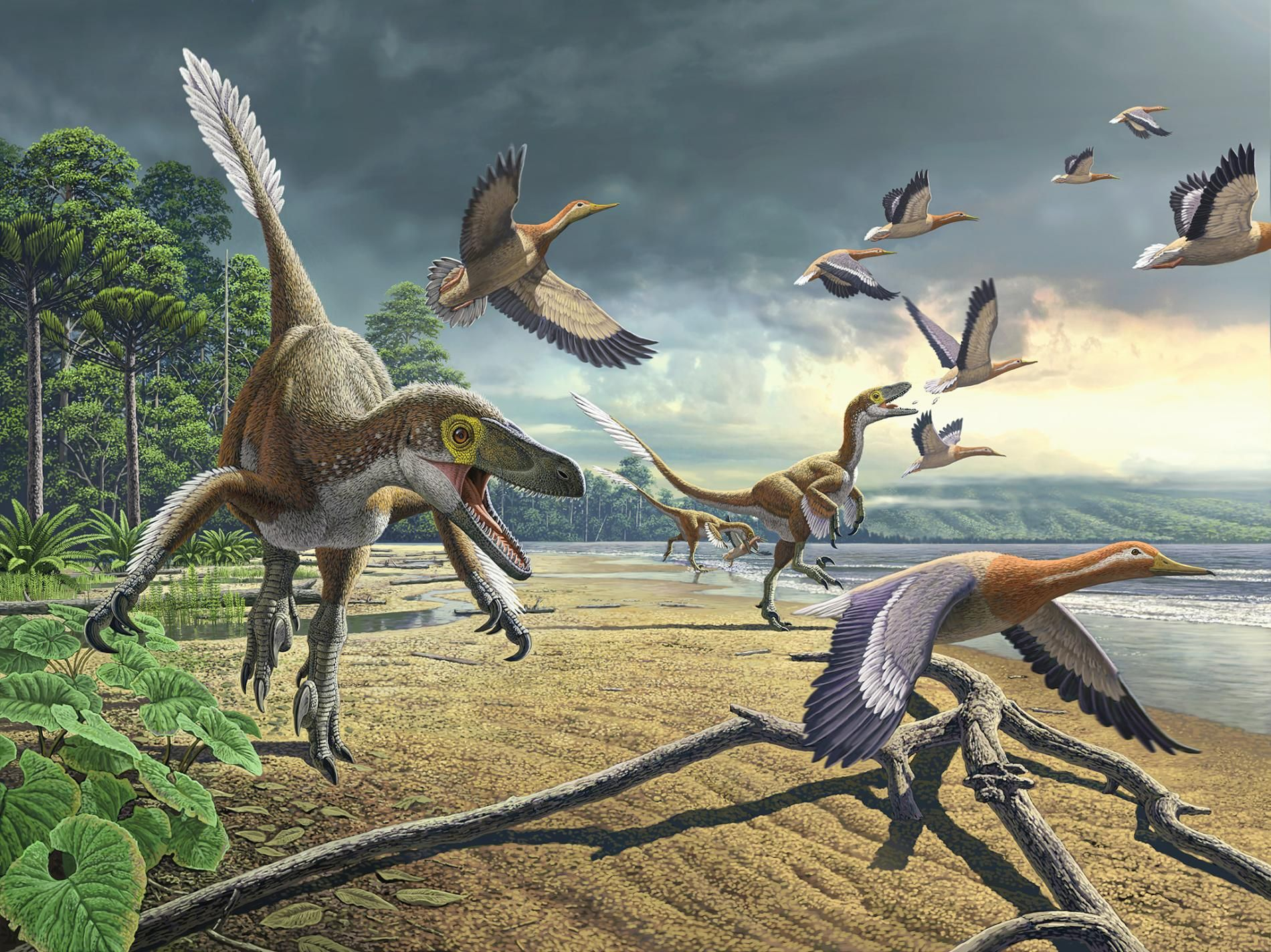 These Are The Dinosaurs That Didn T Die Prehistoric Animals Prehistoric Creatures Duck Species