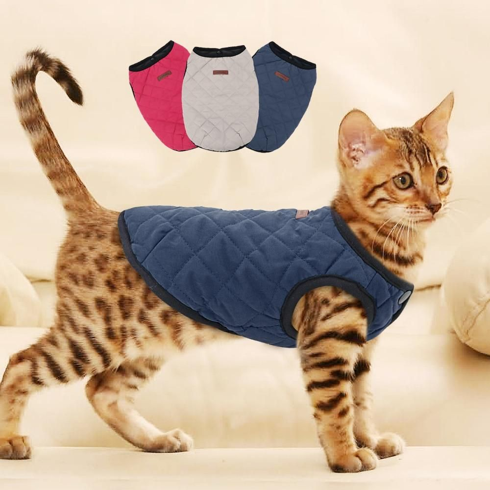 Cat Clothes Kitten Outfit Jacket Vest Winter Clothing Pet Coat In 2020 Kitten Clothes Cat Sweaters Dog Clothes Patterns