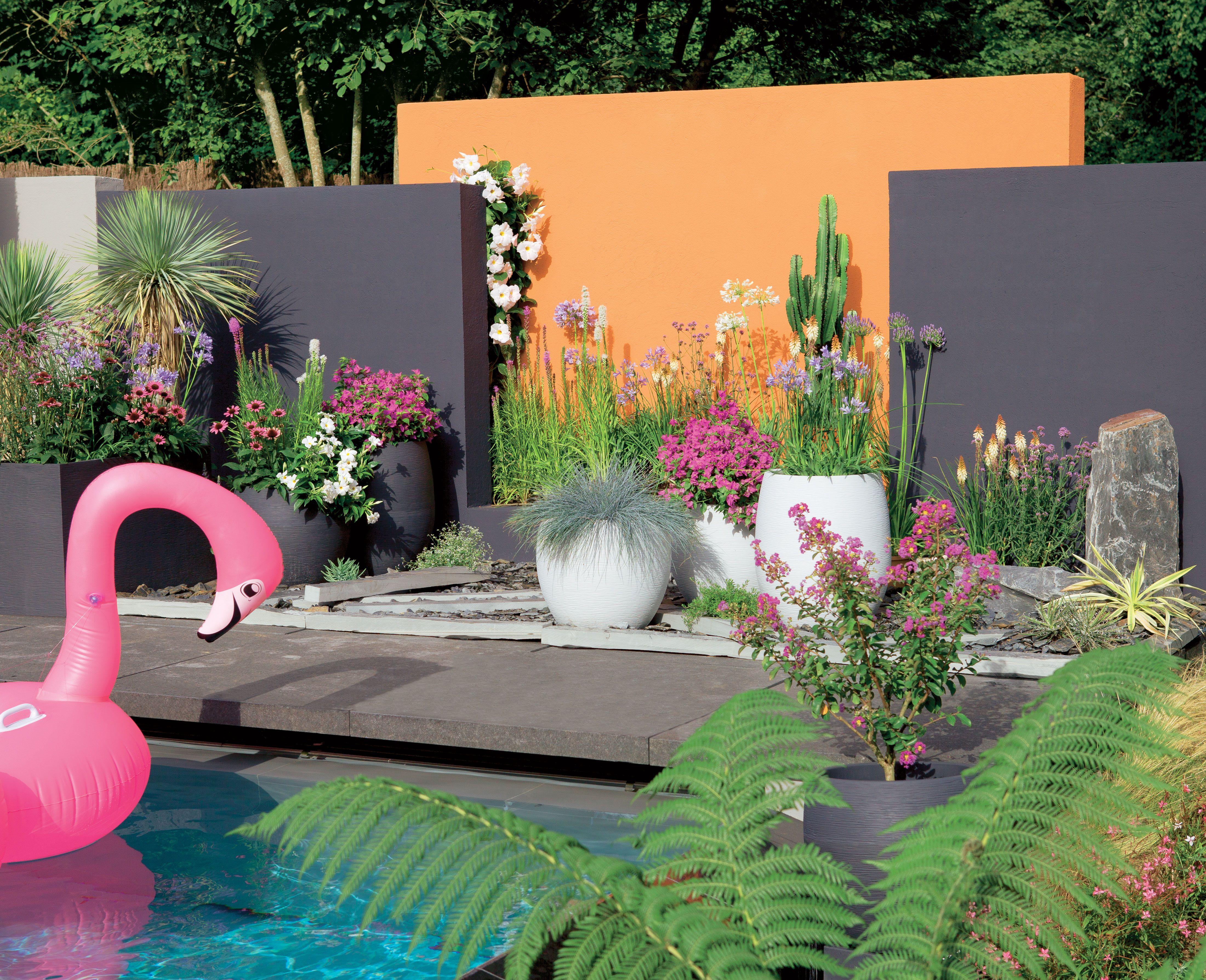 Photo Petit Jardin Exotique un jardin exotique, coloré, dépaysant c'est possible