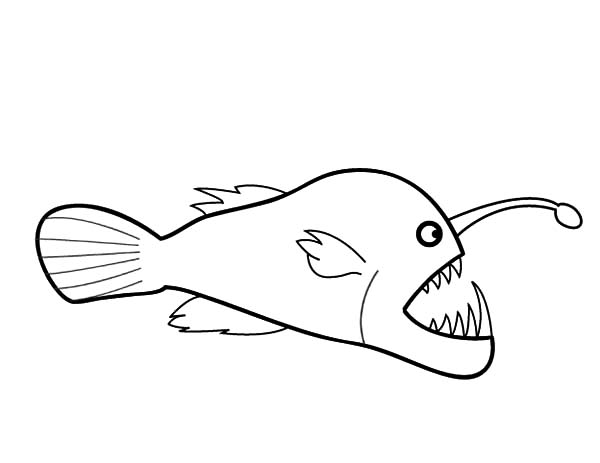 Drawing Angler Fish Coloring Pages Best Place To Color Fish Coloring Page Angler Fish Coloring Pages