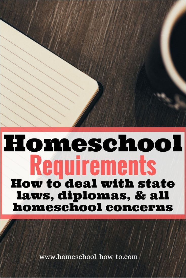 To Homeschooling  Read This Article For Excell