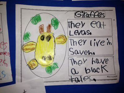 Chalk Talk: A Kindergarten Blog; perfect report format for Kindies