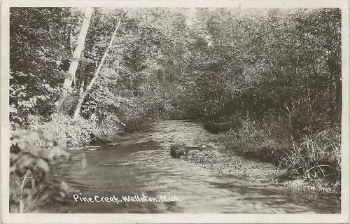 NW Wellston Stronach MI RPPC TROUT COUNTRY Pine Creek 1920s a Trib to the Big Manistee River West of Wellston Photographer UNK Native Browns Rainbos & Brook Trout - source http://vacationrentals.bg/nw-wellston-stronach-mi-rppc-trout-country-pine-creek-1920s-a-trib-to-the-big-manistee-river-west-of-wellston-photographer-unk-native-browns-rainbos-brook-trout/  by  #condo #chalets #cottage