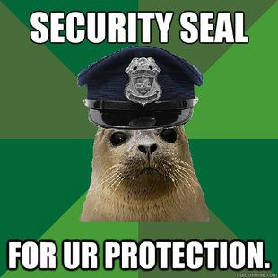 Other Company S Quot Security Seal Quot May Not Be As Valuable As
