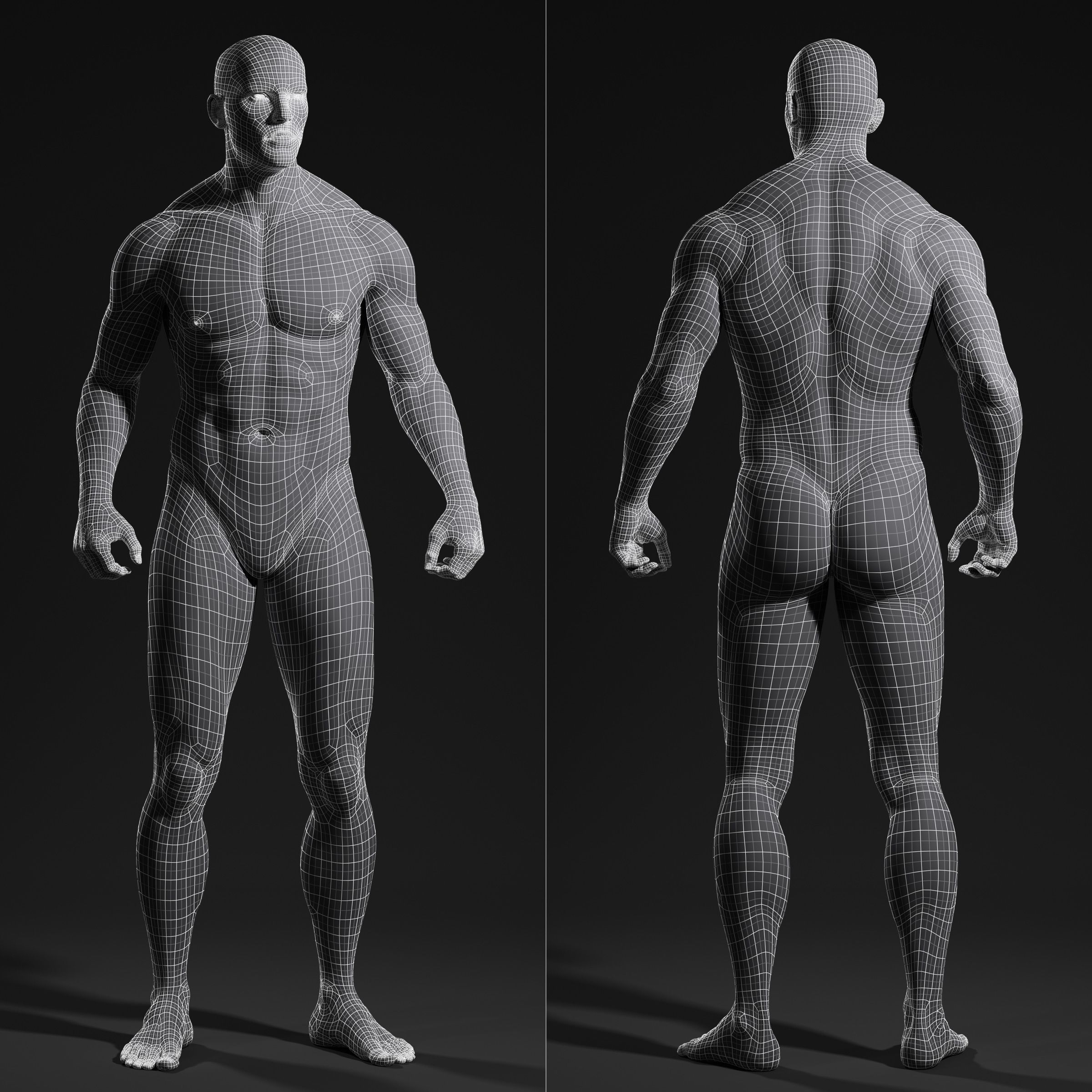 Pin by Brian Kenney 3D on 3D Inspired in 2018 | Pinterest | Anatomy ...
