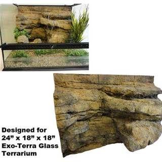 Image Result For Exo Terra Terrarium 36x18x18 Terrarium Vivarium