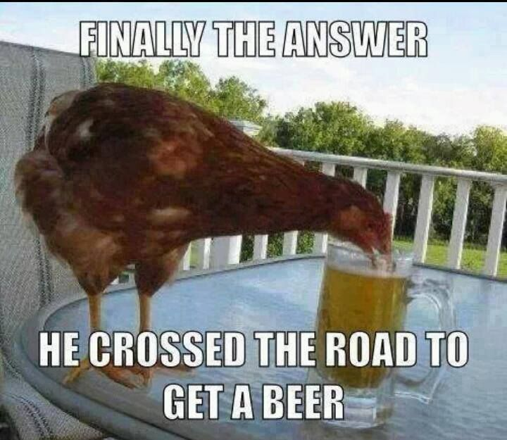 Funny chicken memes - photo#37