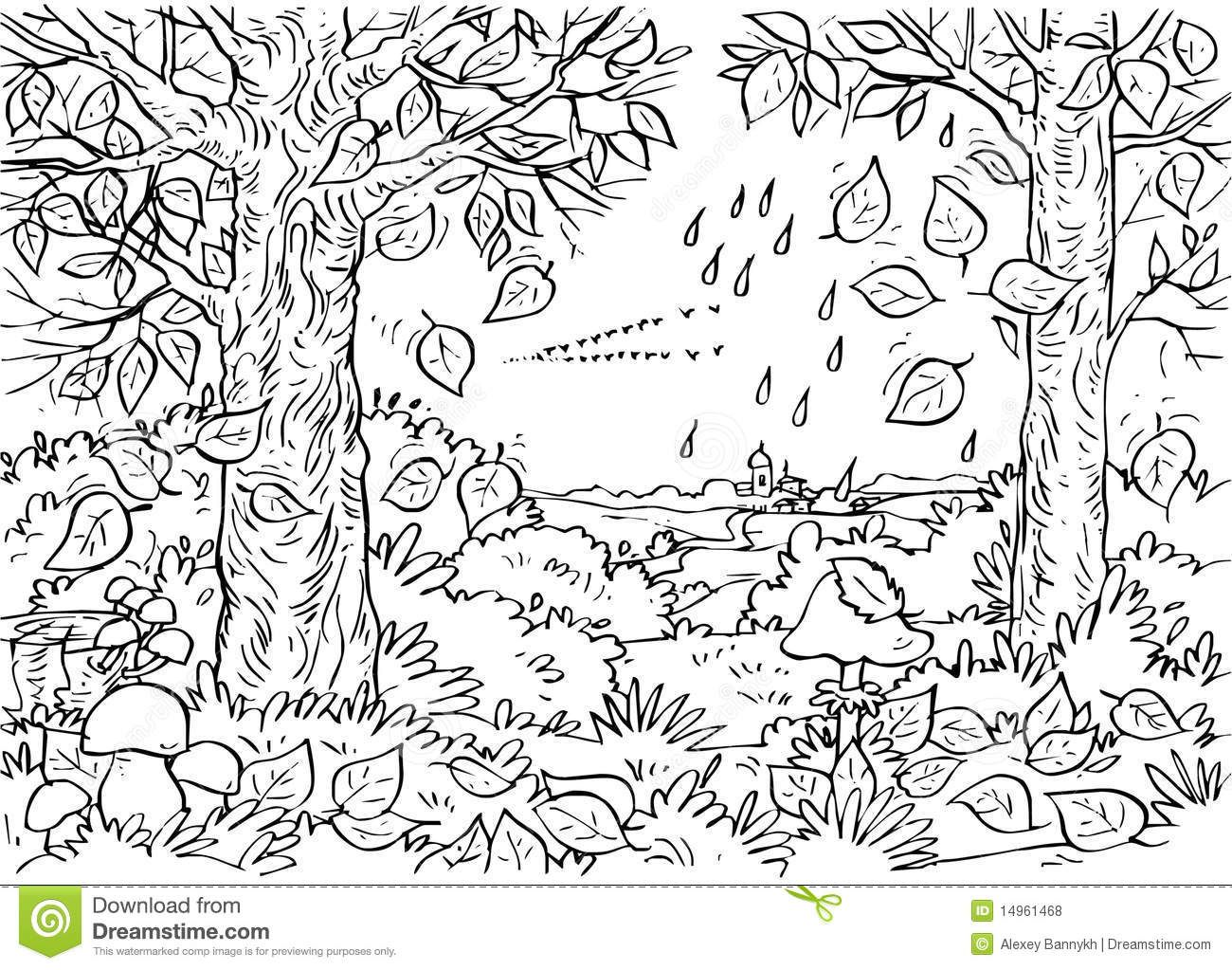 91875 deciduous forest coloring pages jpg 1300 1023 foldables