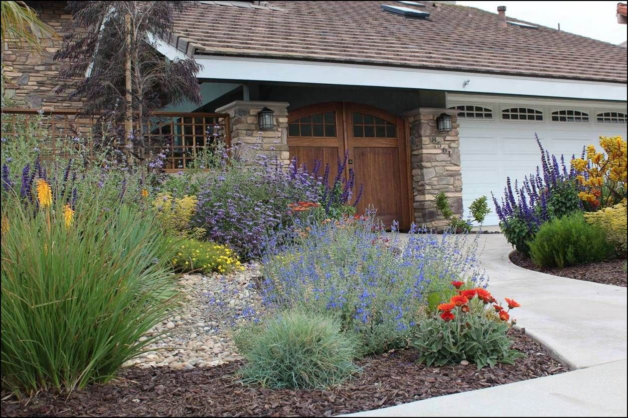 Ca Friendly Design Ideas Small Front Yard Landscaping Xeriscape
