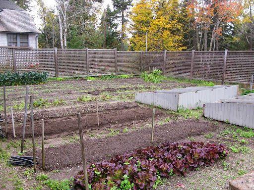 Martha Stewart S Vegetable Garden 44 The Vegetable Garden In The