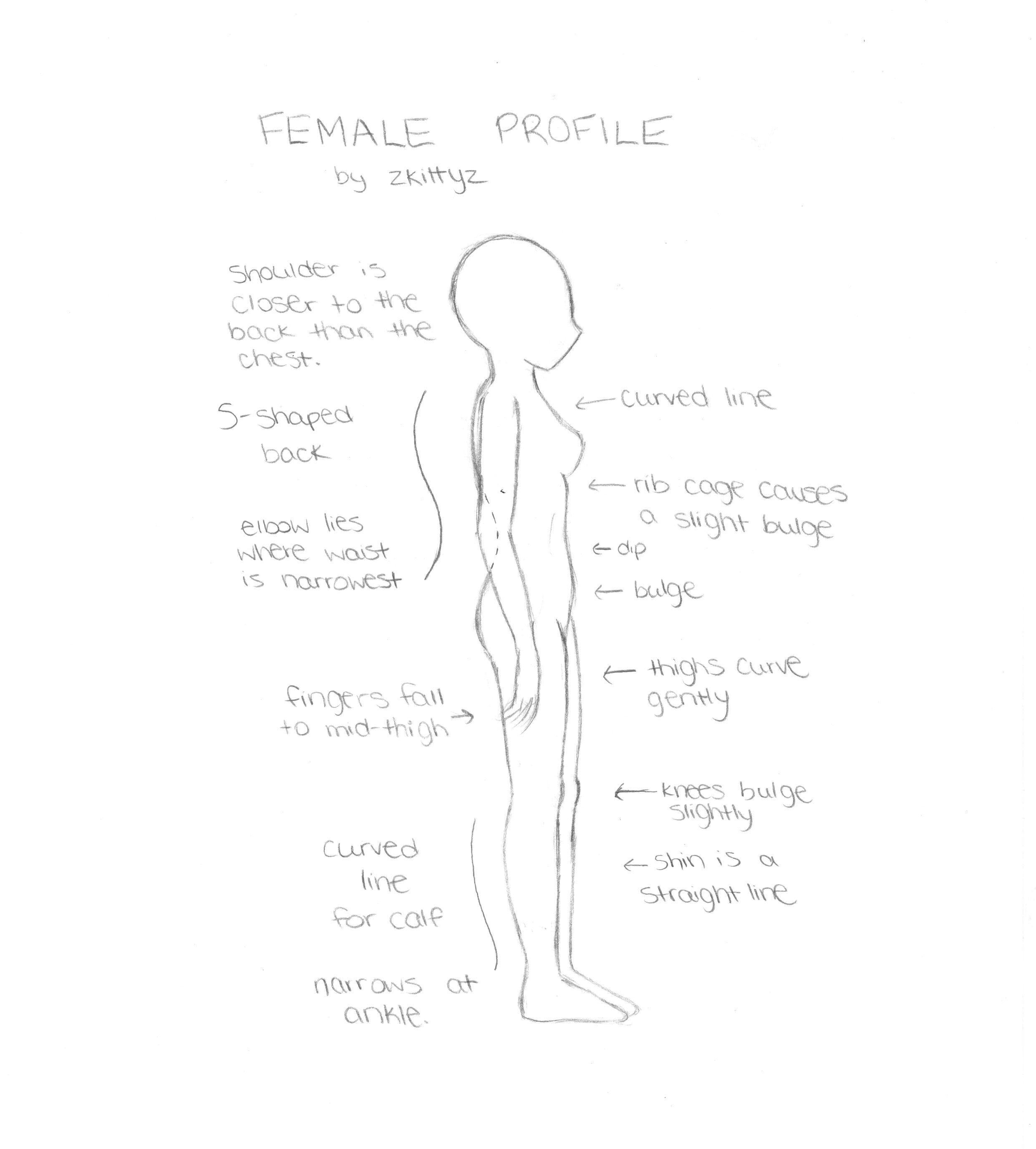 How to draw a female profile cartoon girl drawing cartoon body anime girl drawings