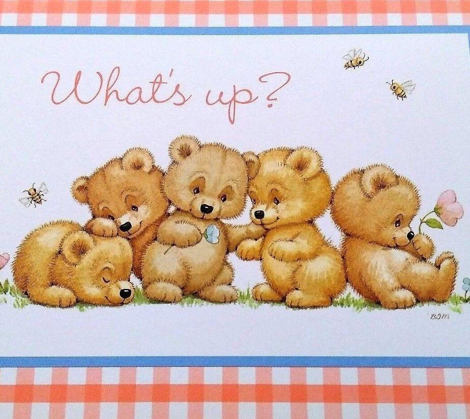 Vtg morehead greeting card unused teddy bears whats up blank greeting card unused teddy bears whats up blank current inc morehead design current m4hsunfo