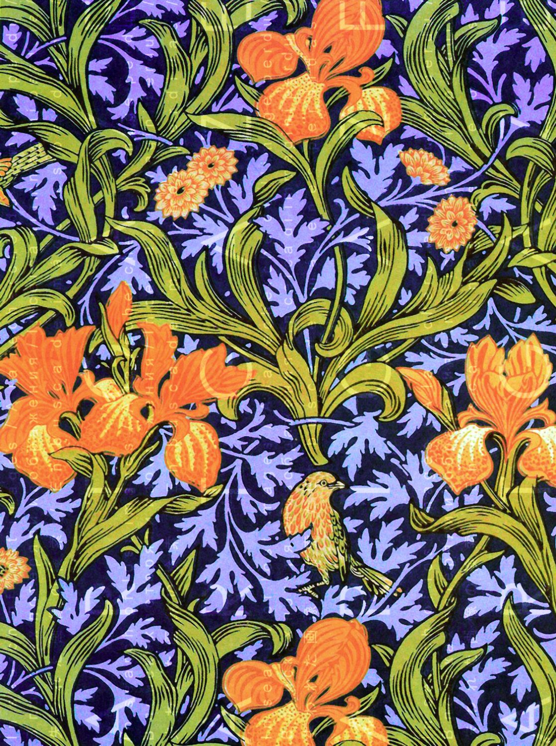 William Morris Wall Paper Design IRIS Flowers & Birds